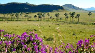 Onde Ficar na Chapada dos Veadeiros: Alto Paraíso ou São Jorge