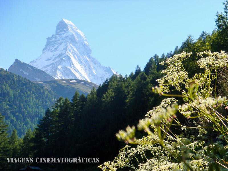 Zermatt Suica