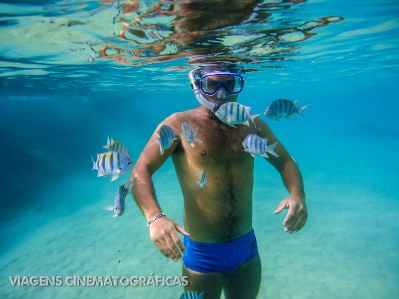 Baía do Sancho em Fernando de Noronha: A Melhor Praia do Mundo