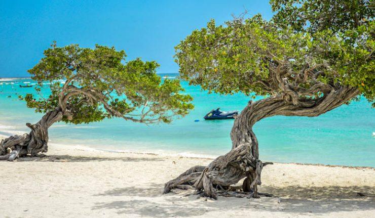 Aruba ou Curaçao: melhores destinos do Caribe