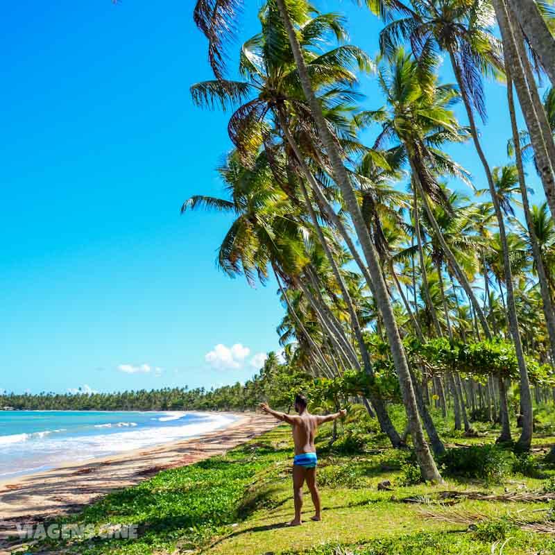 Praia de Garapuá em Morro de SP: Faixa de Coqueiros