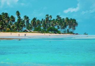 O que fazer em Porto de Pedras: Praia do Patacho e Projeto Peixe-Boi - Alagoas
