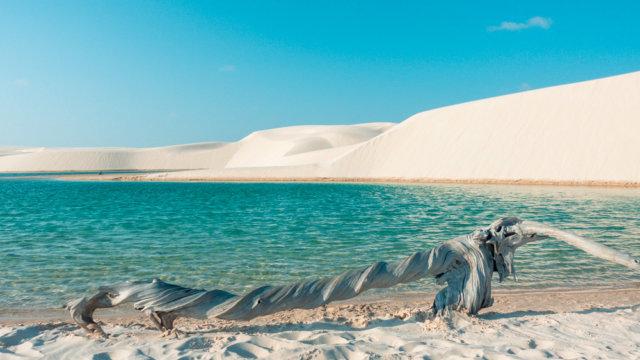 3f755b1df O que fazer na Bahia  Dicas de Viagem e Principais Pontos Turísticos