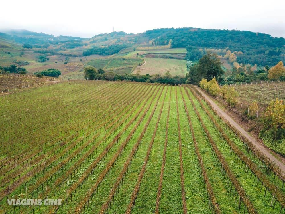 Serra Gaúcha: Roteiro do Vinho em Bento Gonçalves e Vale dos Vinhedos